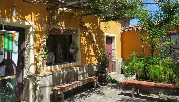 Tarija sus bodegas y la reserva de Sama