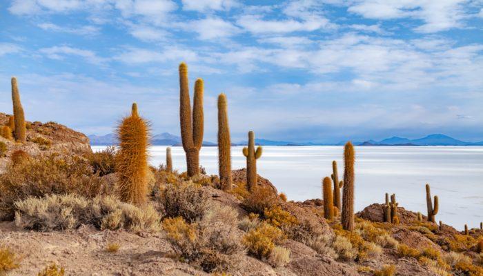 SAN PEDRO DE QUEMEZ - CAVE OF GALAXIES - UYUNI SALT FLAT - TAHUA (3660 m a.s.l./ 12,008 ft)