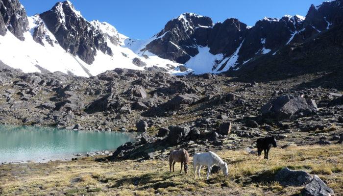 LAGUNA LECHE KHOTA (5140 m.a.s.l./16863 feet) / REST